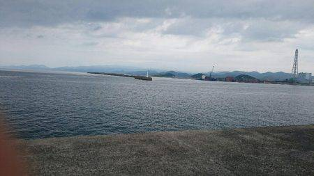 鹿児島釣行 最終日‼
