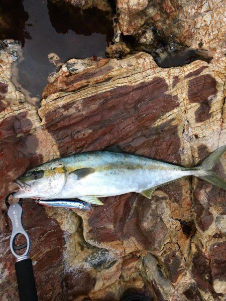 ゴールデンウィーク(GW)2018 島根でオススメの釣り