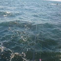 磯フカセ釣り。