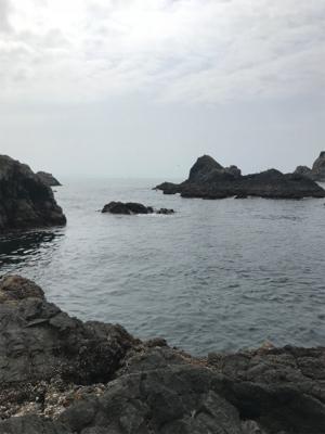 御五神島 沖磯グレ