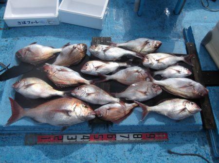 海宝丸 釣果