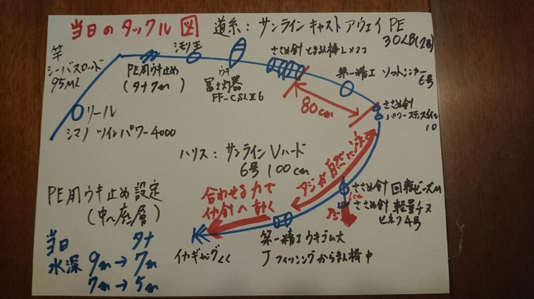 アオリイカ GW釣行記【角田裕介氏連載記事浮きアオリイカ釣り 第19弾】