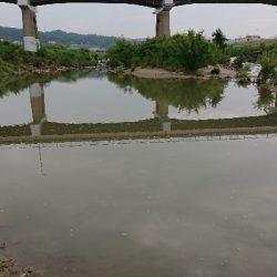 大阪 淀川水系