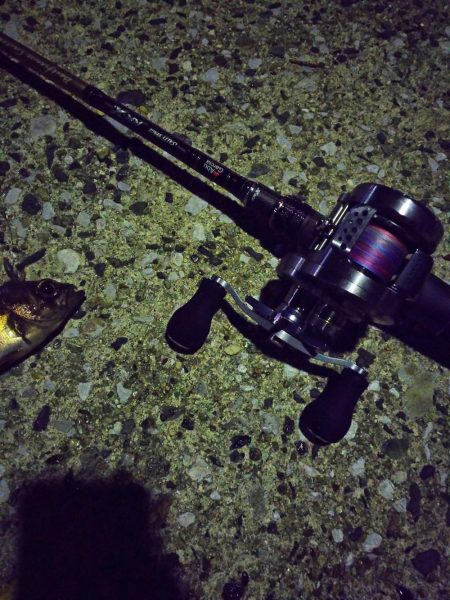 マゴチを釣りに行ったはずが…