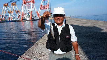 久々の播磨新島で満足釣果
