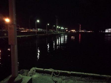 南港フェリーでヘチ釣行 (なんとかキビレチヌ(36.5cm他)ガシラ頭20cm5匹釣果)