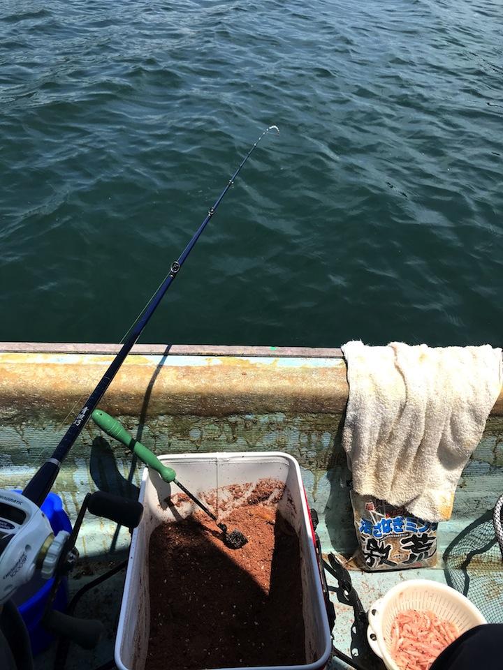 ダンゴ釣りに初挑戦