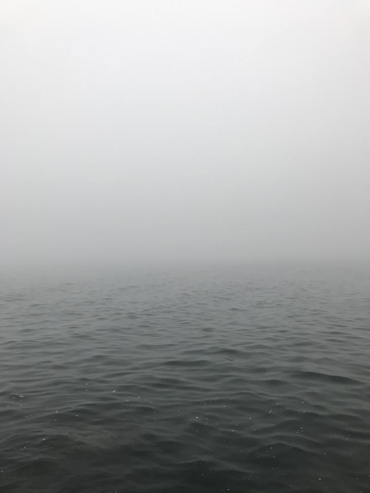 霧が酷かった7月前半のポイント