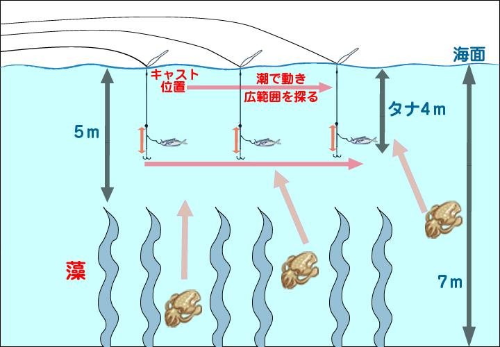 浮きアオリイカ釣り仕掛けイメージ