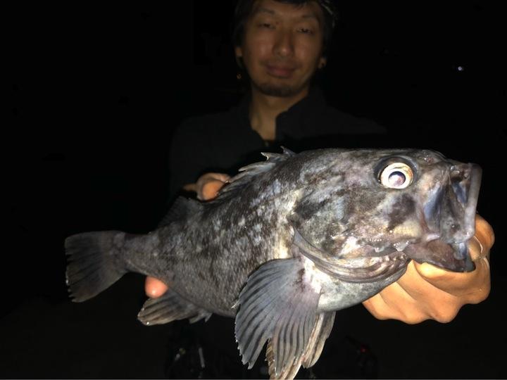 岩手県のメバリング釣行記