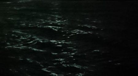 アオリイカ撃沈