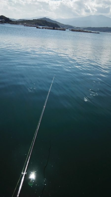 秋の行楽に!魚釣り入門にはサビキ釣りがオススメ【ジェミニ氏連載 vol.2】