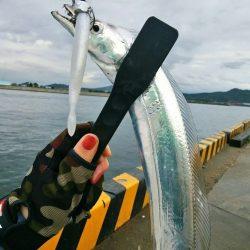 今シーズン太刀魚するならスローワインドがベスト! がまかつLUXXE(ラグゼ)ワインドマスターモニターレポート