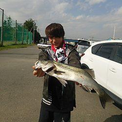 KO-SHIN丸 釣果