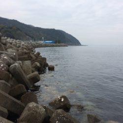 大浦漁港でイワシ・タチウオ