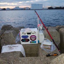 播磨新島・東二見水道共にキスが居ません