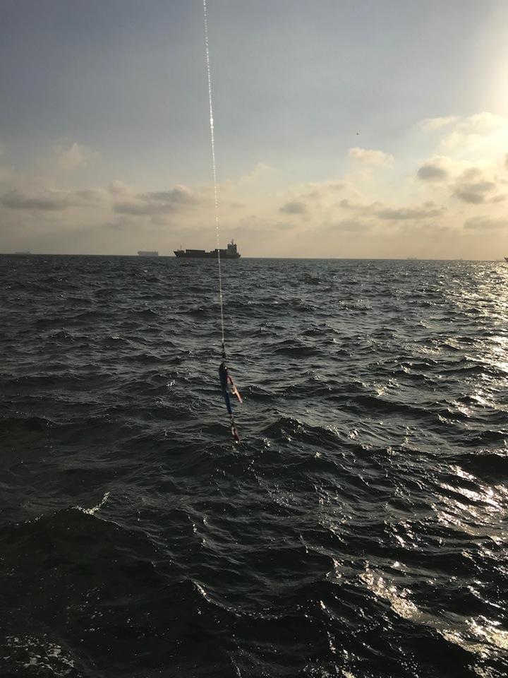 本牧海釣り施設・新護岸でキャスティング・ブレードジグMegabassマキッパのモニター釣行