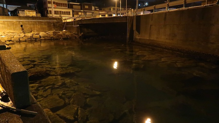流れ込みポイント〜夜の漁港でのライトゲーム
