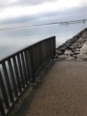 琵琶湖 南湖 陸っぱり