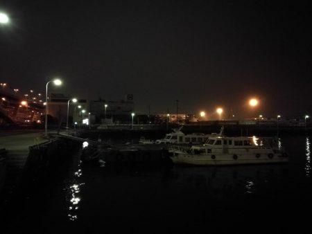 南港フェリーヘチ釣り (好釣果ラッキーデイ! 真チヌ47cmとタケノコ、ハゼ 釣果有り)