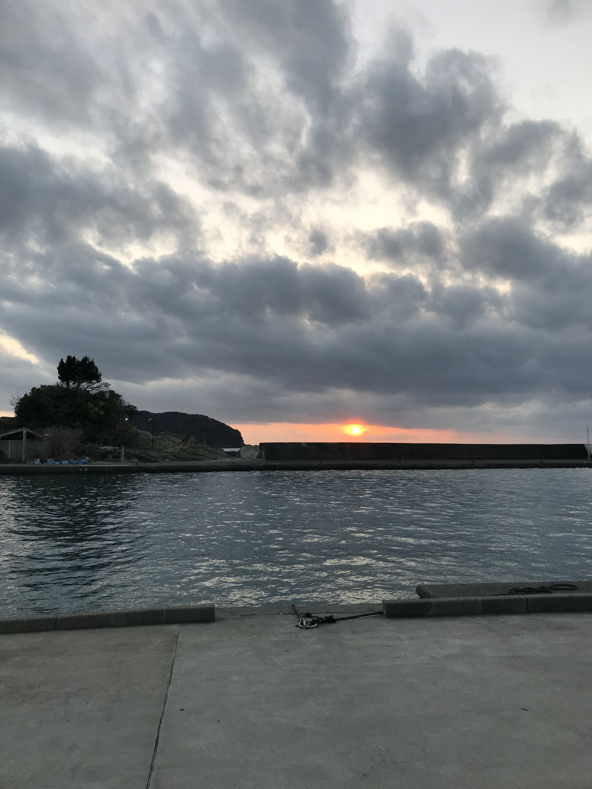 今年初釣りは千葉内房でのフカセ釣り【すな氏連載 vol.7】