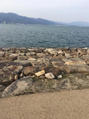 琵琶湖釣行