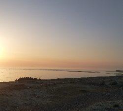 重信川ウェーディングでヒラメ20センチ