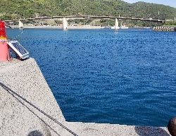 アオリイカ 浮き釣り