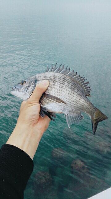 梅雨の合間の釣行