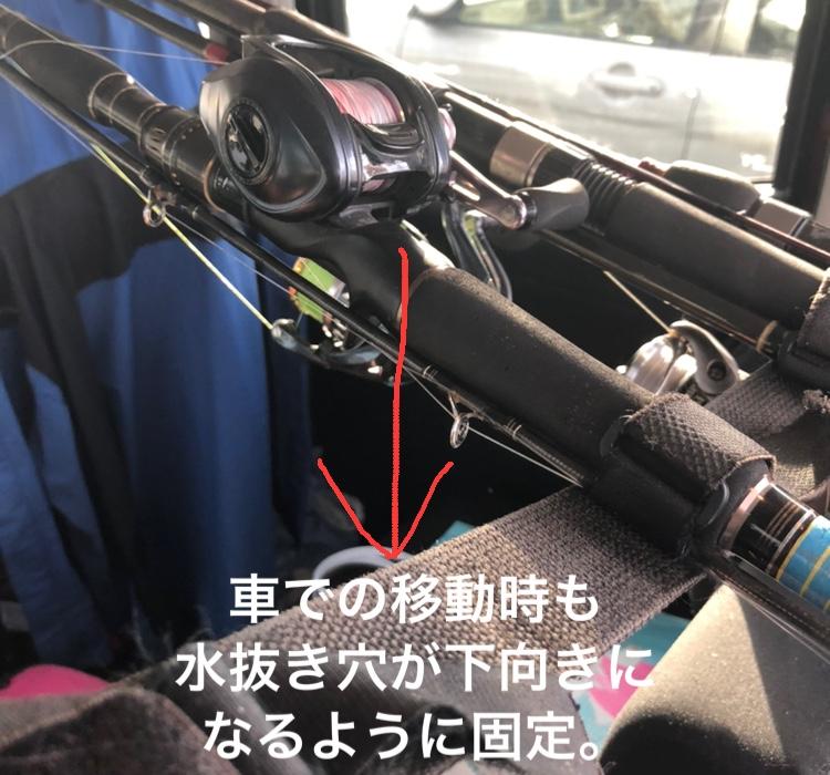 今年のシーバスはやはり変。しかし、とんでもないものが・・【ずん氏連載 vol.12】