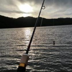 今日も朝6時から大隅湖行ってきました