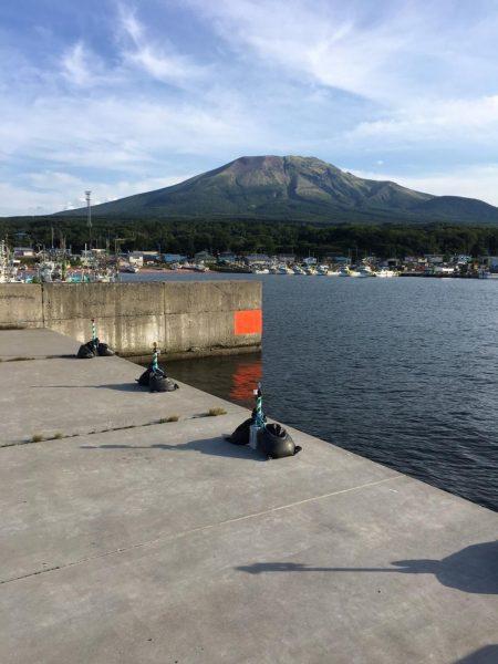 函館港のソイ釣り