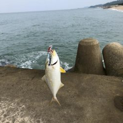 安定の釣果