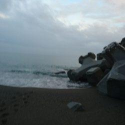 桂浜周辺サーフ、ライトショアジギング