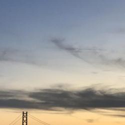 夕方のアジ