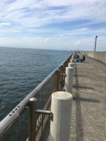 干潮の堤防釣り