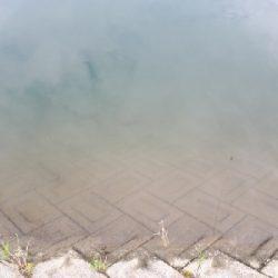 和歌山県紀の川釣行