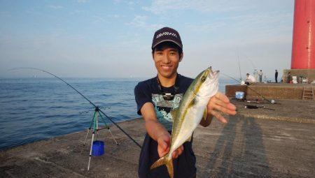 無風で強烈な暑さの播磨新島釣行