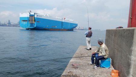 潮の動き良い播磨新島釣行