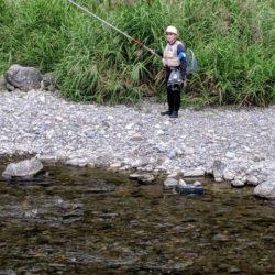 大井川(大井川(非)漁業協同組合) 釣果
