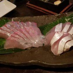 暁〜akatsuki〜 釣果