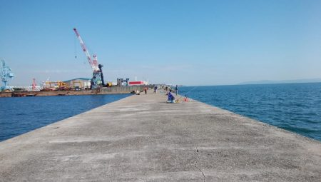 台風接近前の播磨新島釣行