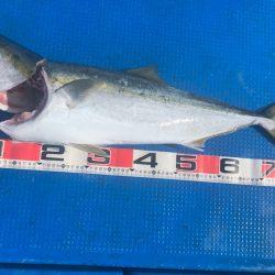 釣鯛洋 釣果