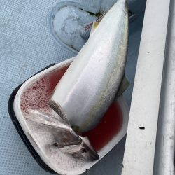 千尋丸 釣果
