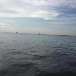 四日市沖堤防でショアジギング
