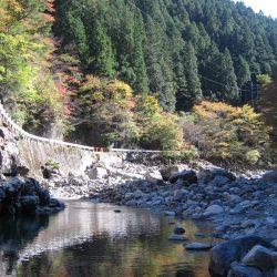 晩秋の天川管理釣り場は、13時以降がオススメ