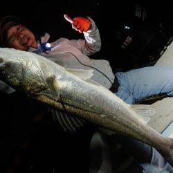 釣日和 釣果