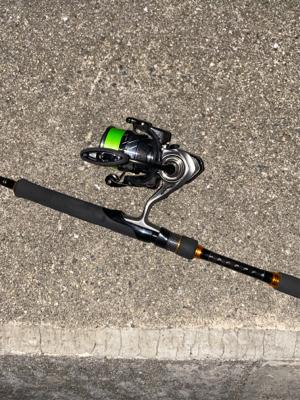 試し釣りでゲット!