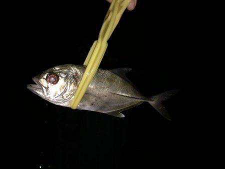 釣りはじめ