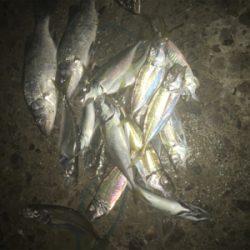 大漁!楽しい1日